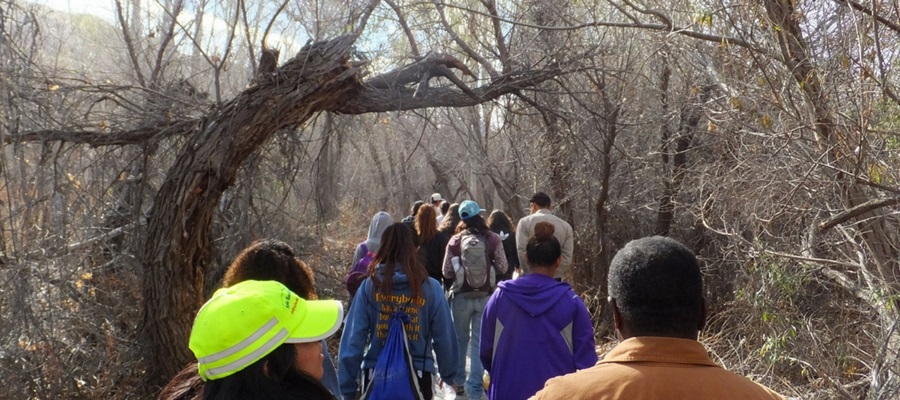 Big Morongo Canyon Preserve Native Plant Walk